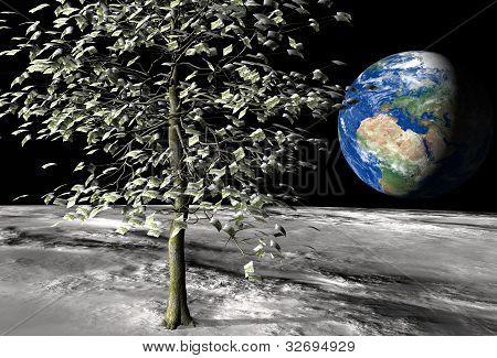 100 Euro Money Tree On The Moon