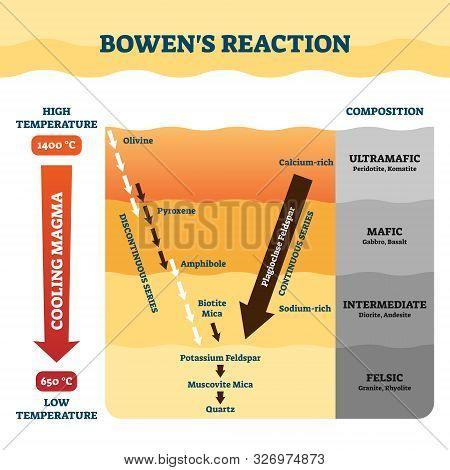 Bowens Reaction Vector Illustration. Labeled Petrology Work Explanation Scheme. Educational Diagram