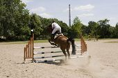 horse with rider jumping over obstacle during jumping contest poster