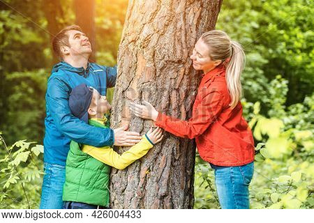 Family, father, mother and son in forest on sommer day. Escape to nature. Hiker hugging tree trunk. Save the planet.