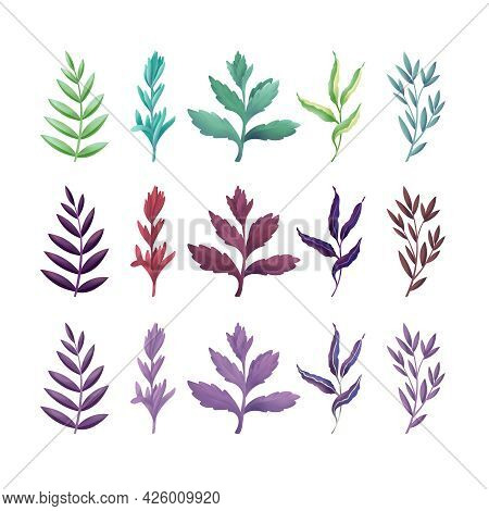 Set Of Various Leaves Vector Design In Various Colors On White Background