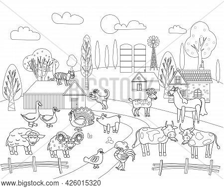Farm Animals Coloring Book Educational Illustration For Children. Set Cute Cow, Buffolo, Sheep, Roos
