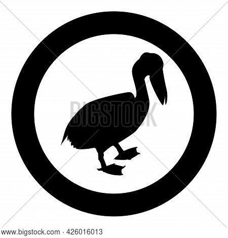 Pelican Bird Seabird Waterbird Silhouette In Circle Round Black Color Vector Illustration Solid Outl