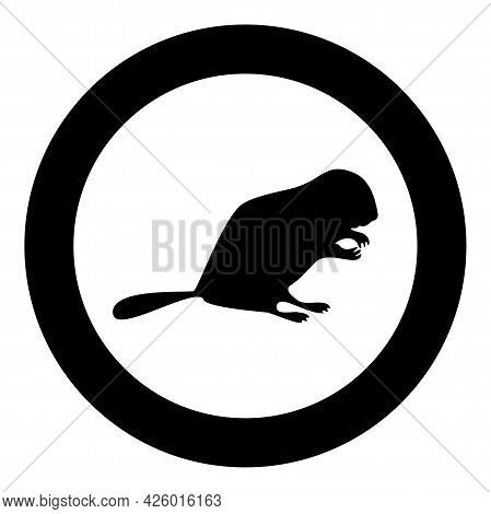 Beaver Animal Rodent Stand Silhouette In Circle Round Black Color Vector Illustration Solid Outline