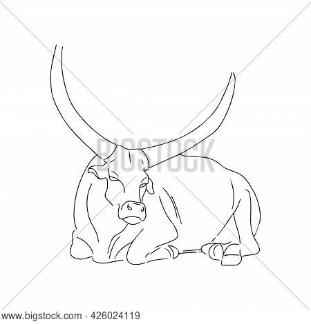 Vector Silhouette Of A Bull. Symbol Of 2021. Wild Animal, Silhouette Of A Healthy Bull With Horns. T