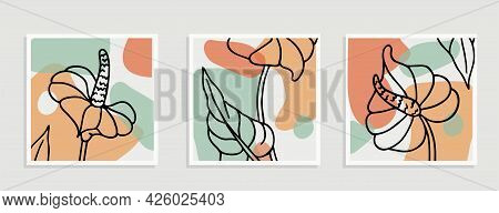 Botanical Wall Art Set. Flower Line Art Drawing With Abstract Shape Vector Illustration. Abstract Pl