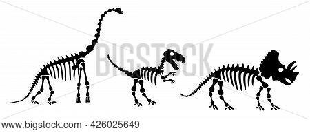 Dinosaur Silhouettes Set. Silhouette Of Dinosaur Skeletons, Dinosaur Bones. Diplodocus, Tyrannosauru