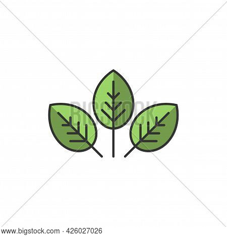 Three Leaves Eco Icon. Vector Illustration. Green Flat Leaves. Leaf Organic Icon. Logo For Eco Compa