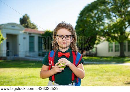 Back To School. Portrait Of Schoolboy From Elementary School At The School Yard.