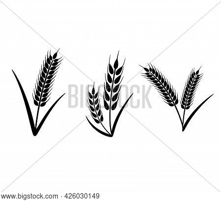 Ears Of Wheat, Barley Or Rye. Vector Graphic Icons, Ideal For Bread Packaging, Beer Labels. Set Of O