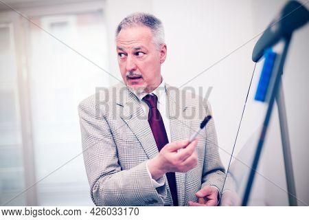 Senior businessman explaining a business project