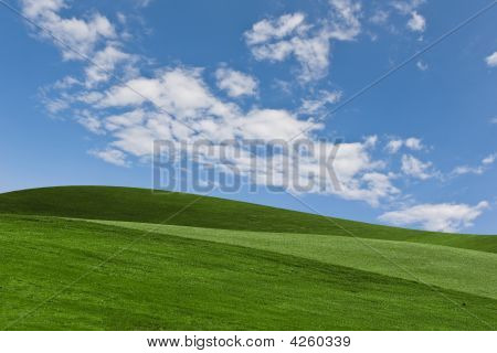 Scenic Background