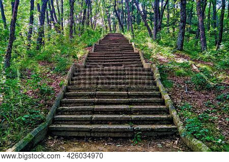 An Old Stone Staircase In The Woods Going Up