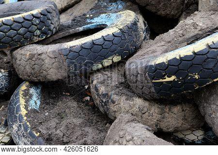 Heap Of Old Muddy Tires, Junk Yard Of Used Car Wheels.