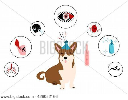 Dog`s Fever Symptoms.infographic Icons With Different Signs And Reasons Of High Temperature.canine H