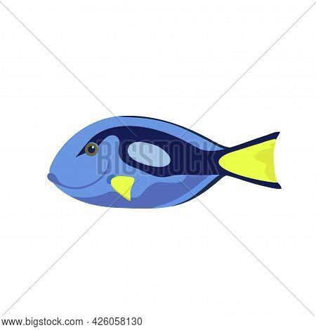 Cartoon Illustrations Of Surgeon Fish Isolated On White Background.