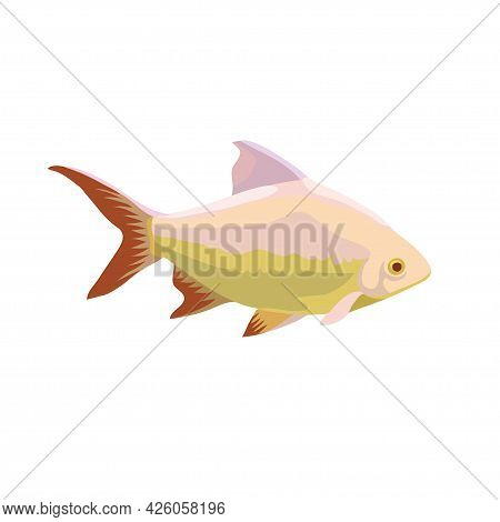 Cartoon Illustrations Of Tropical Fish Isolated On White Background.