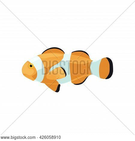Cartoon Illustrations Of Clown Fish Isolated On White Background.