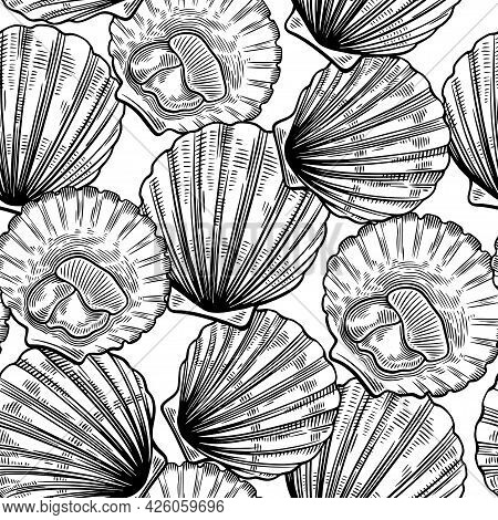 Seamless Pattern In Line Art Vintage Style With Scallops. Sea Food Texture For Wrapping, Design, Fab