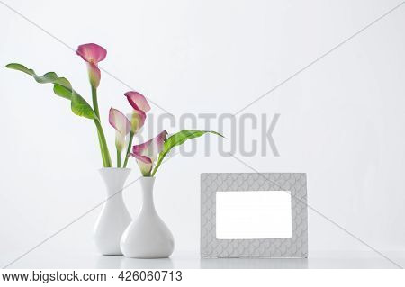 Frame And Pink Calla Lily In Vase  On White Background