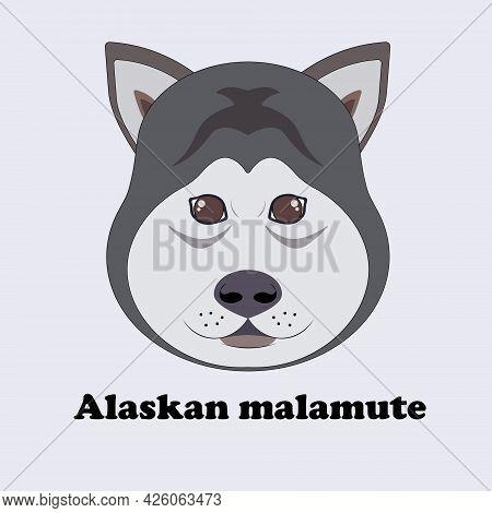 Alaskan Malamute. Print With A Cartoon Husky.
