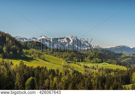 Farm Houses And Meadows In Appenzellerland With View Of The Saentis, Canton Appenzell Ausserrhoden,