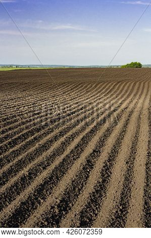 Deep Furrows To The Horizon In The Field After Plowing, Vertical Image