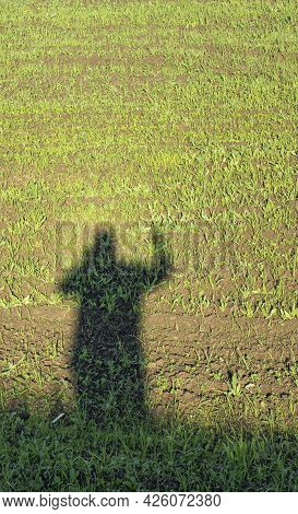 Shadow Of A Man With A Raised Hand On The Background Of A Field With Young Greens