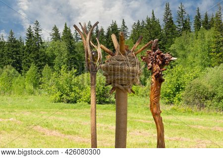 Three Magical Wooden Staffs On Meadow Against Forest Background