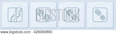 Set Line Snake Paw Footprint, Human Footprints Shoes, Paw And . White Square Button. Vector