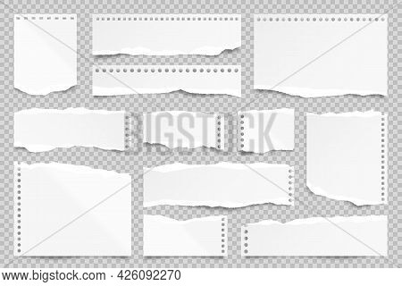 Ripped Paper Strips Isolated On Transparent Background. Realistic Paper Scraps With Torn Edges. Stic