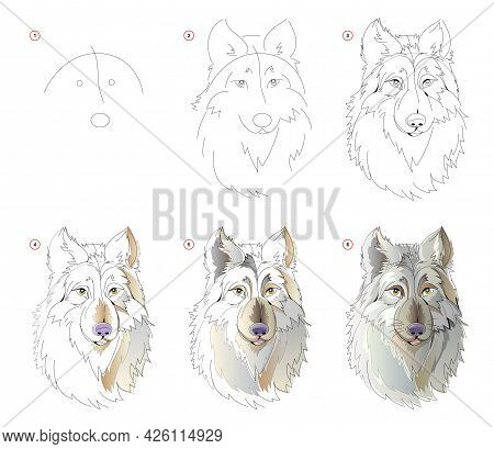 How To Learn To Draw Sketch Of The Fairy Tale Wolfs Head. Creation Step By Step Watercolor Painting.