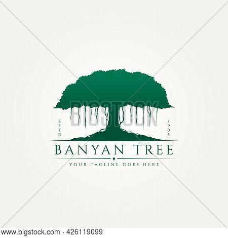 Banyan Tree Classic Silhouette Premium Logo Template Vector Illustration Design. Environment, Nature