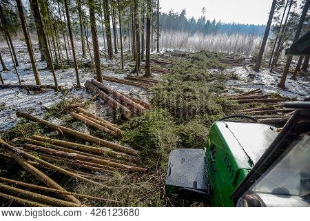 Belarus - 02.02.2015 - Machines For Logging, Timber Production, Mens Work Are Working In The Forest.
