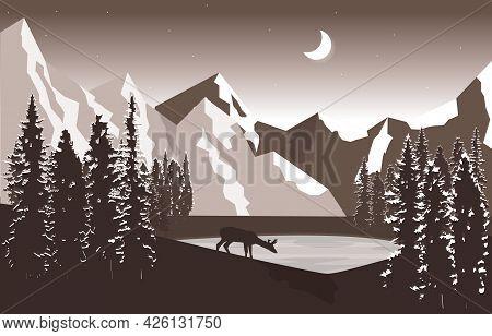 Night Mountain Peak Pine Trees Nature Landscape Adventure Illustration