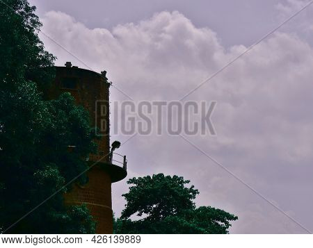 Historical Light House View With Green Tree On Sky Background. Historical Commercial Image.