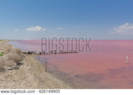 Pink Salt Lake Sasyk-sivash In Crimea. Beautiful Fairy-tale Landscape With A Lake And Blue Sky With