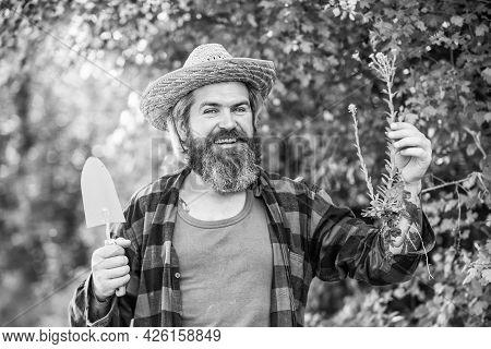 Botanic Worker. Trowel Digging Soil. Garden Tools. Seeds And Soil. Spring In The Garden. Farmer Givi