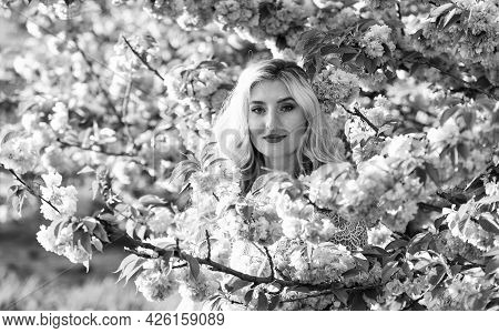Tenderness And Femininity. Cherry Tree. Floral Aroma. Reasons Why Flowers Make Women Happy. Rest Rel