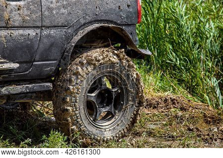 Dirty Rear Fender And Wheel In A Swamp Off-road Tire Treads On A On The Banks Of The River With Reed