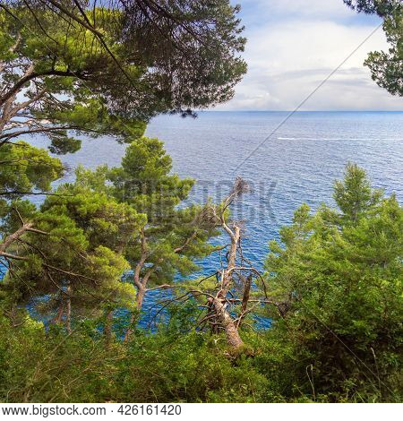 Beautiful Seascape Overlooking The Sea. Petrovac Na Moru, Montenegro