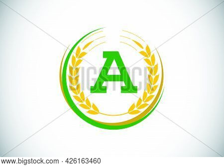Initial Letter A Sign Symbol With Wheat Ears Wreath. Organic Wheat Farming Logo Design Concept. Agri