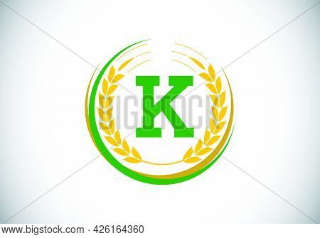 Initial Letter K Sign Symbol With Wheat Ears Wreath. Organic Wheat Farming Logo Design Concept. Agri
