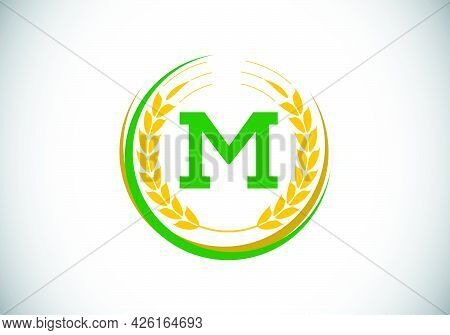 Initial Letter M Sign Symbol With Wheat Ears Wreath. Organic Wheat Farming Logo Design Concept. Agri