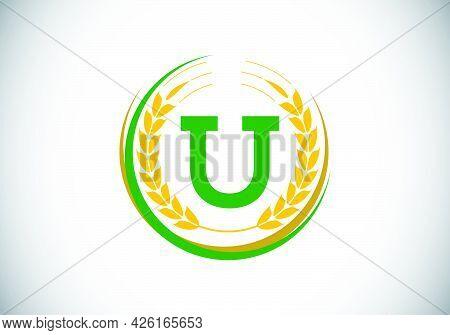Initial Letter U Sign Symbol With Wheat Ears Wreath. Organic Wheat Farming Logo Design Concept. Agri