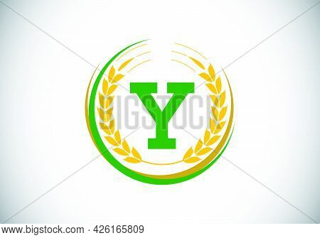Initial Letter Y Sign Symbol With Wheat Ears Wreath. Organic Wheat Farming Logo Design Concept. Agri