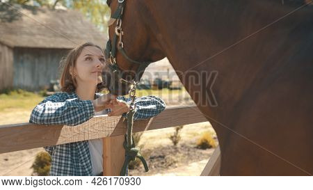 Young Girl Looking At Her Dark Bay Horse With Love. Girl Resting Her Hands On The Wooden Fence. Back