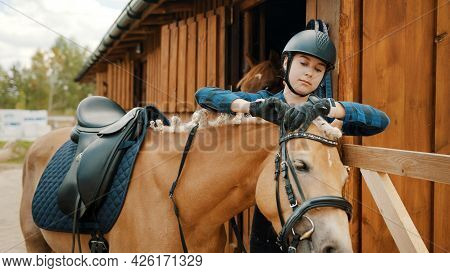 Female Jockey Fixing Bridle Of Her Light Brown Horse Outside The Stable.the Girl Wearing A Safety He