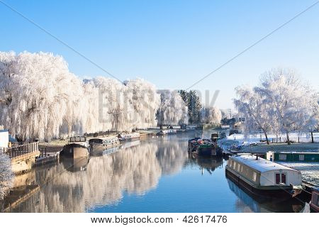 Winter willow tree at the riverside 2
