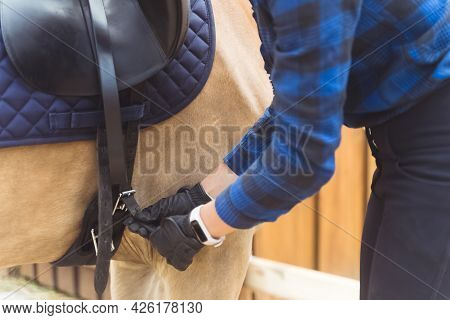 Female Jockey Saddling Up Her Palomino Horse For The Horse Riding Competition. Tying Up The Leather